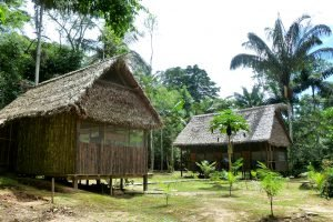 Cabanes privatives dans le parc Madidi.
